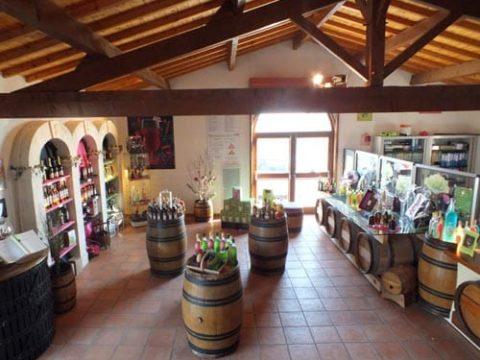 vignoble-vincent-parcours-magasin-480x360