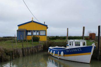 oyster-hut-2863379 (Copy)